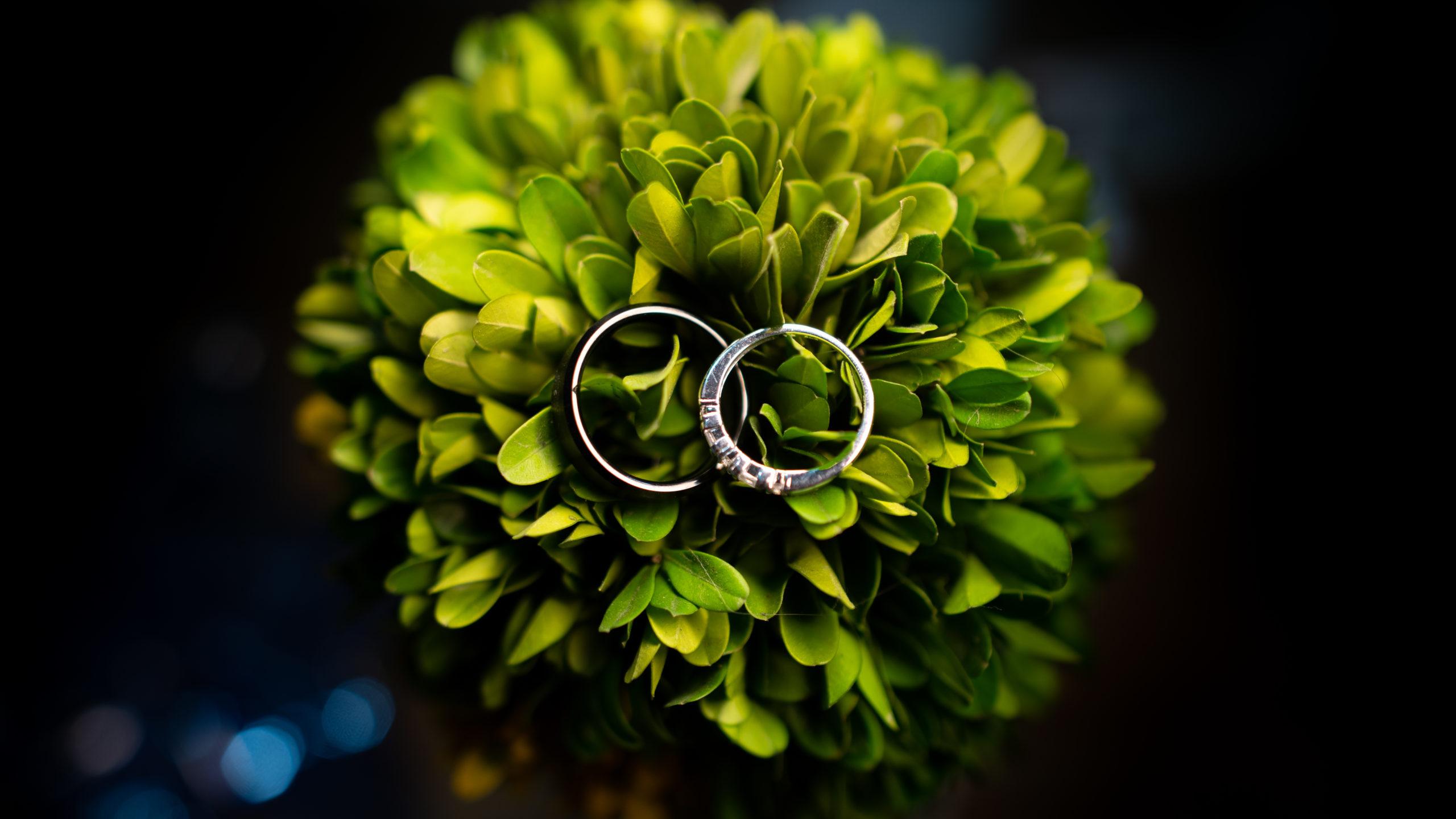 Engagement Rings, Bergman Jewelers