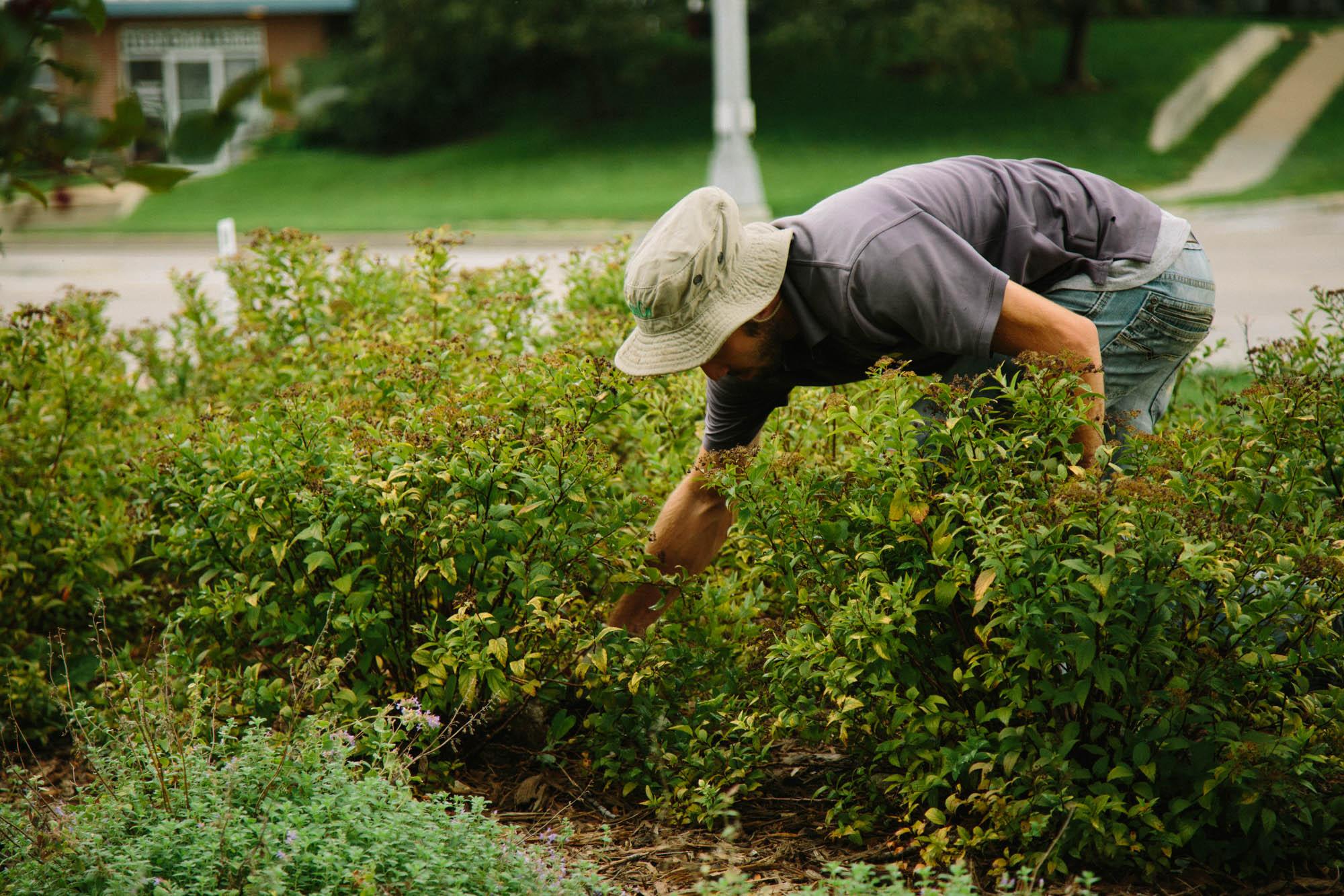 Sunco Lawns Maintenance Technician
